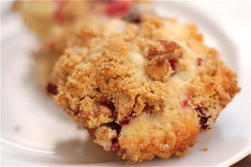 Cranberry Muffins with Pecan Streusel Topping