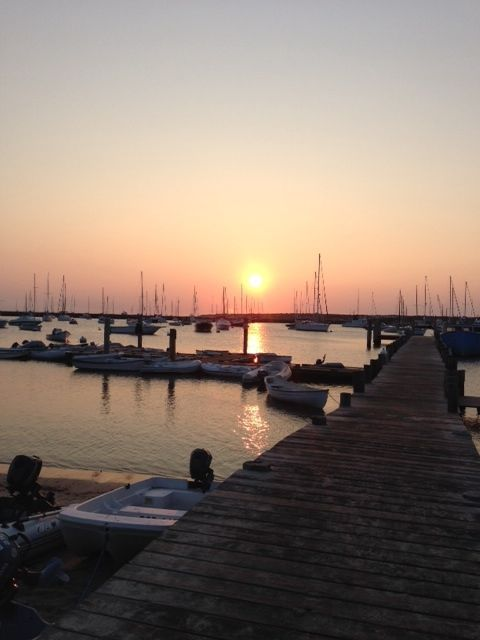 vineyard haven guys Get directions, reviews and information for guys n' dolls day spa in vineyard haven, ma.